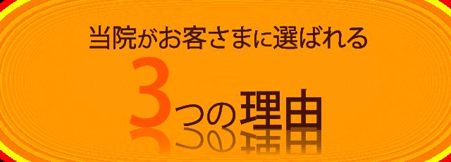 (見出し)選ばれる理由-3--orange