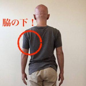 脇の下や肩甲骨周りが凝り固まります。
