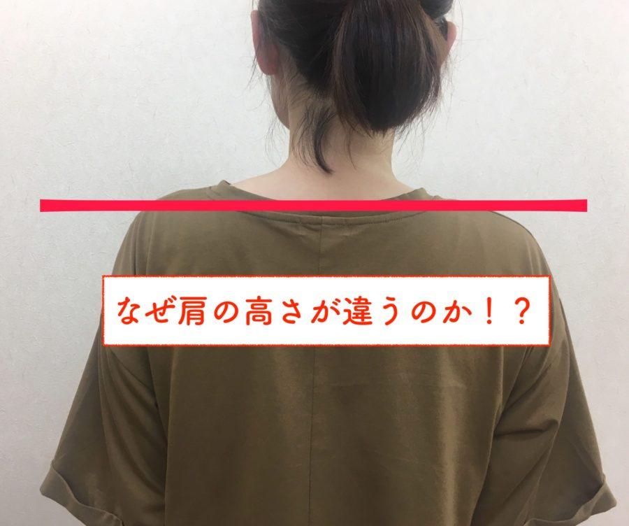 なぜ肩の高さが違うのか??